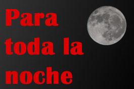 Escorts para toda la noche en Madrid